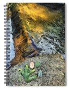 Water And Rock Spiral Notebook