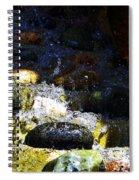 Water Dancer 4  Spiral Notebook