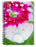 Water Diamond On White Spiral Notebook