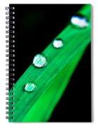 Water Diamonds 14 Spiral Notebook