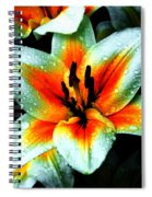 Water Droplet Covered White Lily  Spiral Notebook