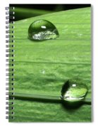Water Droplet On A Leaf Spiral Notebook