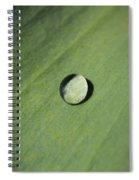 Water Droplet On Green Leaf Spiral Notebook