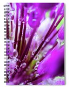 Water Droplets And Purple Flower Spiral Notebook