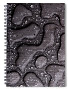 Water Puzzle Spiral Notebook