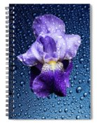 Water Drops On Purple Iris Spiral Notebook