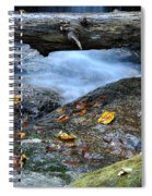 Water Falls Spiral Notebook