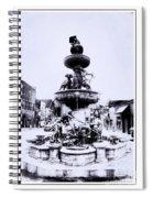 Water Fountain Spiral Notebook