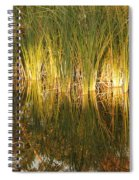 Water Grass In Sunset Spiral Notebook