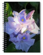 Water Hiacynth Spiral Notebook