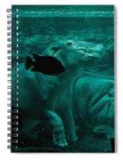 Water Horse Ballet Spiral Notebook