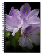 Water Hyacinth Spiral Notebook