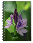 Water Hyacinth Spiral Notebook