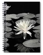 Water Lilies In Black And White Spiral Notebook