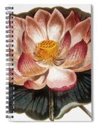 Water Lily, 1806 Spiral Notebook