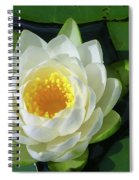 Water Lily 3437 Spiral Notebook