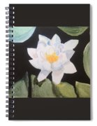 Water Lily 4 Spiral Notebook