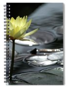 Water Lily And Silver Leaves Spiral Notebook