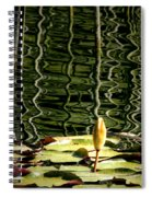 Water Lily Budd Spiral Notebook