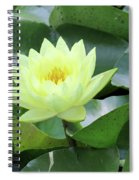 Water Lily - Burnin' Love 14 Spiral Notebook