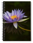 Water Lily Close Up Spiral Notebook