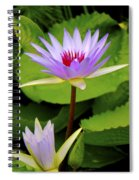 Water Lily In A Tropical Garden_4657 Spiral Notebook