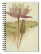 Water Lily  Nymphaea Zanzibarensis Spiral Notebook