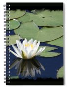 Water Lily With Black Border Spiral Notebook