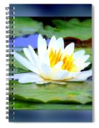 Water Lily With Blue Border - Digital Painting Spiral Notebook
