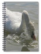Water Off A Swan's Back Spiral Notebook