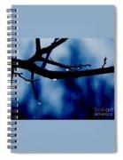 Water On Branch Spiral Notebook