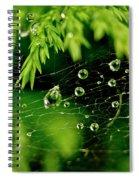Water Orbs In Cobweb. Spiral Notebook