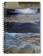 Water Ouzel, Middle Fork Kaweah River, Sequioa National Park Spiral Notebook
