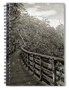 Water Path Spiral Notebook