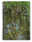 Water Pond Reflection In Peters Canyon Spiral Notebook