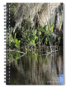 Water Reeds And Spanish Moss Spiral Notebook