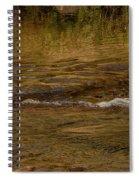 Water Reflection Spiral Notebook