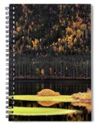Water Reflections In Autumn Spiral Notebook