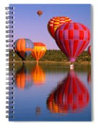 Water Skippers Spiral Notebook