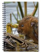Water Vole Cleaning Spiral Notebook