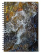 Water Whimsy 169 Spiral Notebook