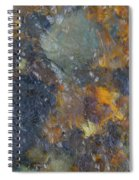 Water Whimsy 170 Spiral Notebook