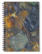 Water Whimsy 171 Spiral Notebook