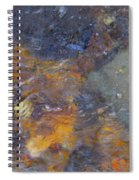 Water Whimsy 172 Spiral Notebook