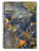 Water Whimsy 173 Spiral Notebook
