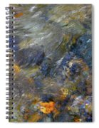 Water Whimsy 174 Spiral Notebook
