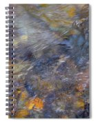 Water Whimsy 175 Spiral Notebook