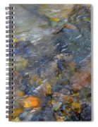 Water Whimsy 176 Spiral Notebook