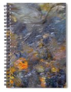 Water Whimsy 177 Spiral Notebook