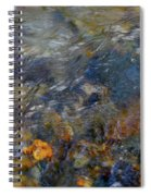 Water Whimsy 178 Spiral Notebook